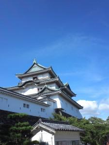 和歌山城に行きました☆